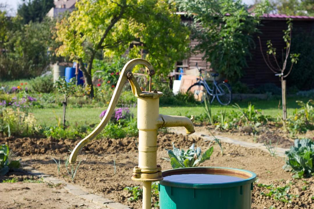 puits jardin