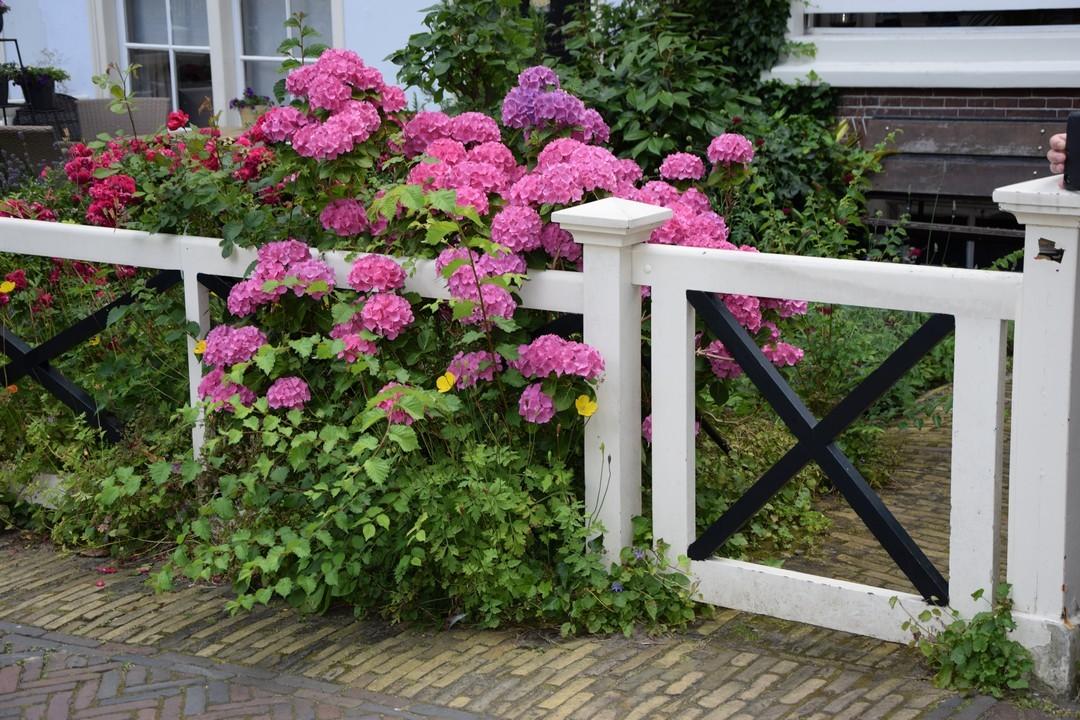 Comment bien choisir sa clôture